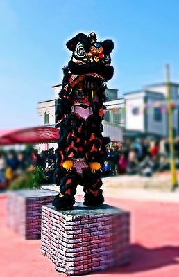 Natural wool Black Lion Dance Costume  Southern Lion kid size For two kid