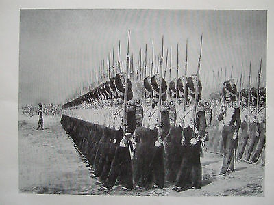 Vintage Military Print- March Past Of The Grenadier Guards-France C 1854