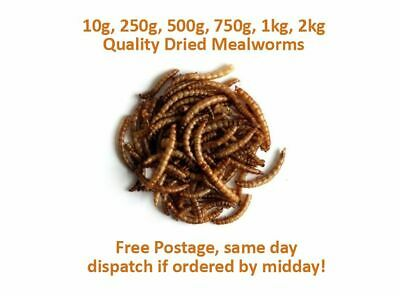 Quality Dried Mealworms Bird Hedgehog Reptile Food 10g-1kg Free Postage