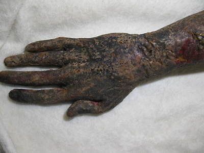 Freddy Krueger Right Arm Original Prop Arm From A Nightmare On Elm Street Movies