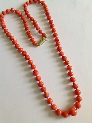 Lovely Fine Antique Natural Coral Graduated Bead Necklace