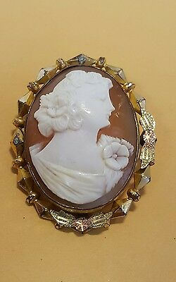 Beautiful Vintage Carved Shell CAMEO Pin Brooch with Gold Filled Frame