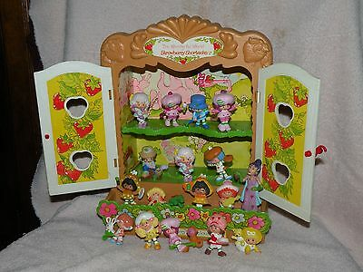 Strawberry Shortcake Display Case with Sour Grapes and 16 Different PVC Figures