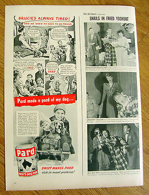 1948 Pard Dog Food Ad  Brittany Dog ?