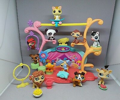 Littlest pet shop circus lot! Brooke accessories and more.