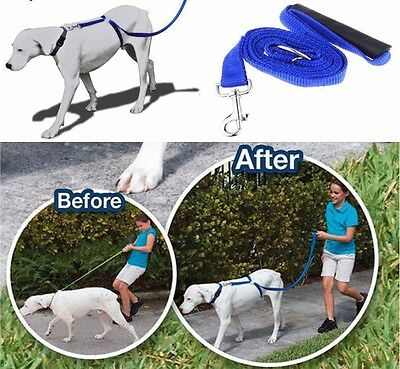 Anti-Pull Dog Harness Walking Leash Lead With Handle Anti Pull Train All Dogs UK