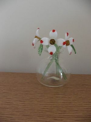 Dogwood - Suffolk Glass