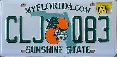 USA Number Licence Plate FLORIDA