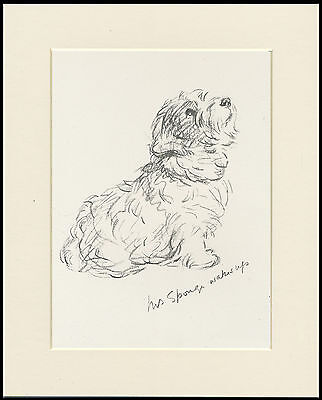 SEATED SEALYHAM TERRIER 1930'S DOG ART PRINT by MAC LUCY DAWSON READY MOUNTED