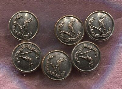Antique Livery Buttons Small Size Bird Design And Motto