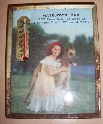 Early Vintage Matejov's Bar Thermometer Sign New York City Lenox Hill Great Dane