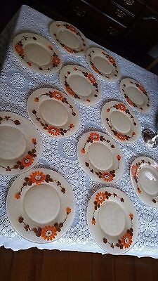 VINTAGE  9 inch  DAISY GLASS PATTERN PLATES SET OF 12 BREAD OR SALAD summer time