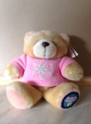 Forever Friends Small Sitting Teddy With Pink  Top