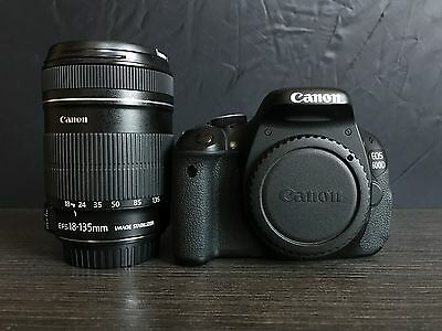 Canon EOS 600D + EF-S 18-135 IS and Think Tank Bag