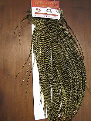Fly Tying Whiting Pro Half Rooster Saddle Grizzly dyed Olive #B