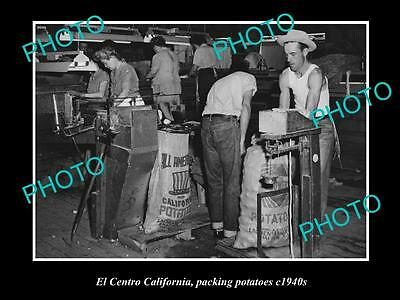 OLD LARGE HISTORIC PHOTO OF EL CENTRO CALIFORNIA, PACKING POTATOES c1940