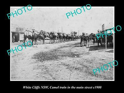 Old Large Historic Photo Of White Cliffs Nsw Camel Train In The Main Street 1900