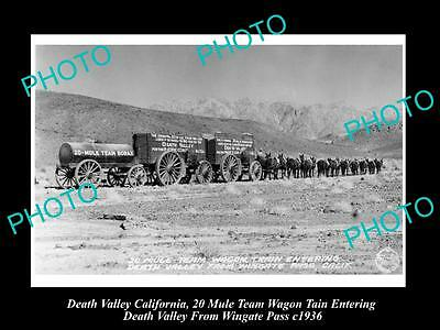 Old Large Historic Photo Of Death Valley California, The 20 Mule Wagon Team 1936