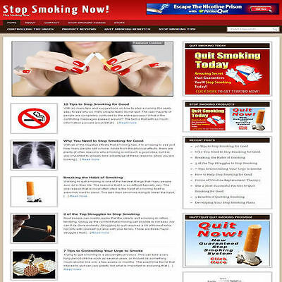 Established 'QUIT SMOKING' Affiliate Website Turnkey Business (FREE HOSTING)