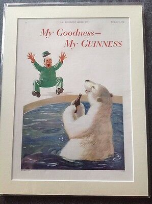 Genuine Old Guinness Advert Illustrated London Vintage Picture Zoo Polar Bear