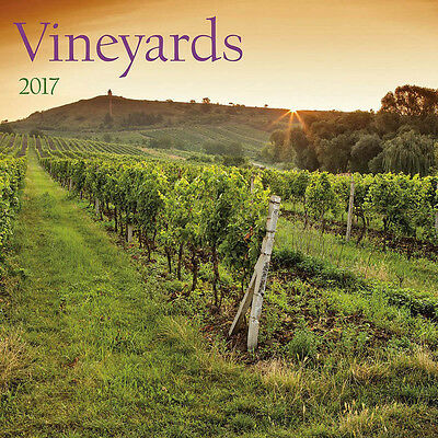 "Vineyards 2017 Wall Calendar by Turner/Lang (12"" x 24"" when opened)"