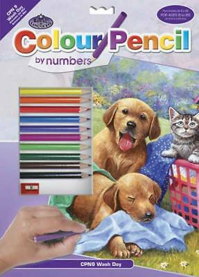 NEW Royal Brush Pencil By Number Wash Day Fun 9x12  CPN9