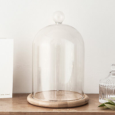 "Glass Cloche Bell Jar Display Dome with Bamboo Base - 8"" x 4"" or 9"" x 6"""