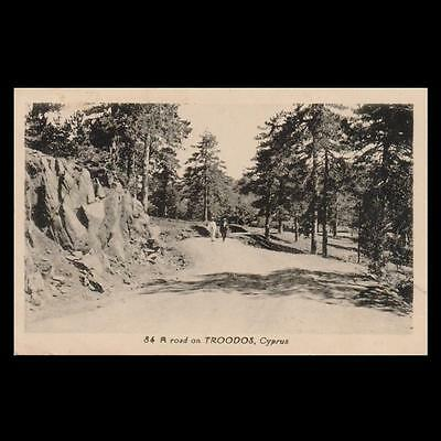 Cyprus 1935 Avedissian's Mailed Postcard To Jugoslavia, Road On Troodos