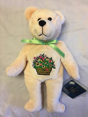 Holy Bears Amelior Get Well Bear Flowers on Front of Bear New