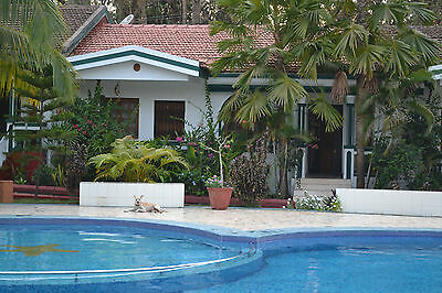 Goa villa for rent