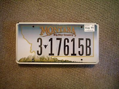 Montana Big Sky Country      License Plate    Buy All States Here