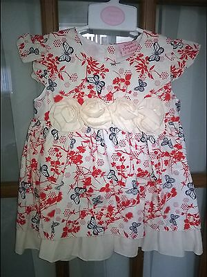 Beautiful  Butterfly Print Rose Bud Baby Dress Size 12/18 Months100% Cotton