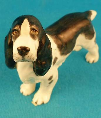 Royal Worcester Doris Lindner English springer spaniel dog old 1950's black/whit