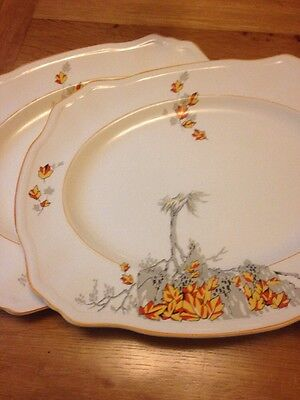 A Pair Of Vintage Alfred Meakin serving plates with autumn scenes