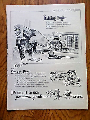 1956 Ethyl Ad  The Balding Eagle The Smart Bird Road Birds Series