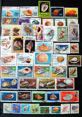 Great Collection Of Stamps Showing Shells, Shell Thematics, Used & Mint.