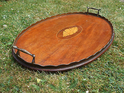 Antique Edwardian Oval Serving Tray Mahogany With Satin Wood Shell Inlay