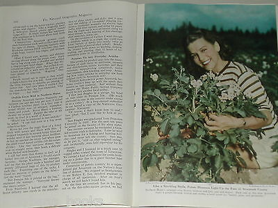 1948 magazine article on Aroostook County, Maine, potatoes etc