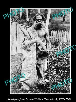OLD LARGE HISTORICAL PHOTO OF ABORIGINAL MAN WRAPPED IN SKINS, AVOCA TRIBE c1880