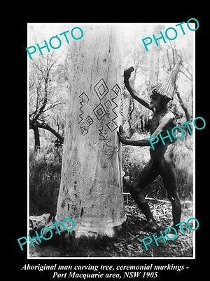 OLD LARGE HISTORICAL PHOTO OF ABORIGINAL MAN CARVING CEREMONIAL MARKINGS c1905