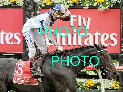 Americain 2010 Melbourne Cup Win Horse Racing Photo 4