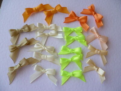 20 Pretty Mixed colour Satin Ribbon bows for card making/scrap booking -charity