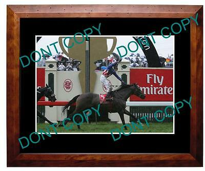 Makybe Diva 2004 Melbourne Cup Win Large A3 Photo