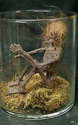 MUMMIFIED FAIRY DISPLAY,FOLKLORE,SIDESHOW GAFF,MOVIE Prop,Freak,CURIO,OOAK,ODD