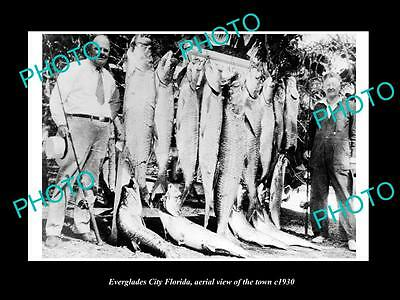 OLD LARGE HISTORIC PHOTO OF EVERGLADES CITY FLORIDA, FISHERMAN WITH TARPON c1930