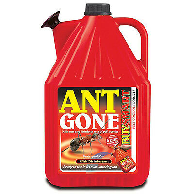 Buysmart Ant Gone Ready To Use 5 Litres - Kills Ants & Disinfects 5L