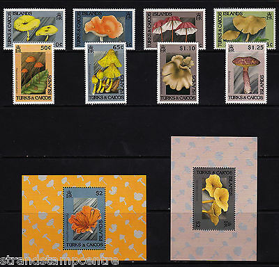Turks & Caicos Islands - 1991 Fungi - U/M - SG 1104-11 + MS1112 (2)