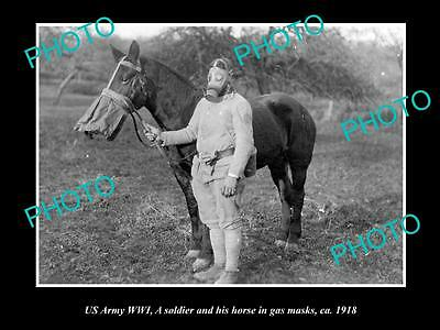 OLD LARGE HISTORIC PHOTO OF US ARMY WWI, SOLDIER & HORSE WITH GAS MASK c1918