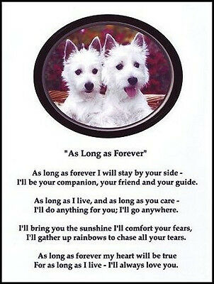 """Beautiful  WEST HIGHLAND WHITE TERRIER print """"AS LONG AS FOREVER"""" westie NEW!"""