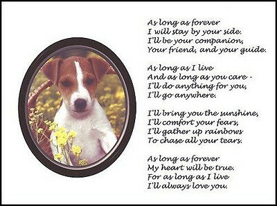 """Beautiful JACK RUSSELL TERRIER print """"AS LONG AS FOREVER"""" art dog pup poem NEW!"""